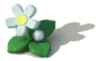 Decoration - White Flower.png