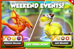 Ace Dragon & Phoenix Dragon Promotion (Weekend Events).jpg