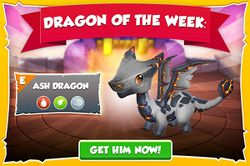 Ash Dragon Promotion (Dragon of the Week 2015).jpg