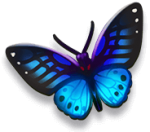 Item - Butterfly.png