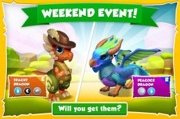 Tracht Dragon & Peacock Dragon Promotion (Weekend Events).jpg
