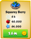 Squarey Berry Information.png