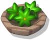 Food - Star Fruit.png