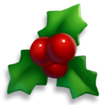 Item - Holly Berry.png
