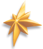 Item - Christmas Star.png